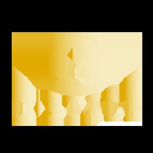 dstylelogo